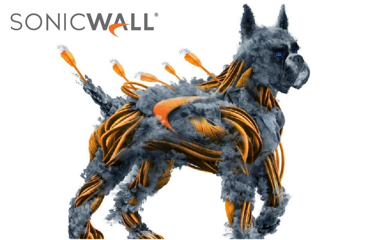 Firewall - Sonicwall